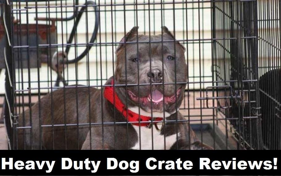 best heavy duty dog crate reviews